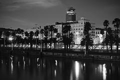 At night (Fnikos) Tags: port puerto porto harbour harbor sea water waterfront sky skyline architecture building tree palmtree dark darkness light reflection night nightview nightshot blackandwhite monochrome outdoor