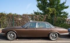 Jaguar 5.3 automatique (monsieur Burns) Tags: sonyphotographing jaguar