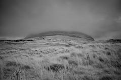 Strandhill Dunes (Infrakrasnyy) Tags: infrared ir 093 sony nex 5n converted camera full spectrum deep black white monochrome bw ireland sligo erie strandhill