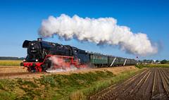 44 1593-1 - Lieren - 01/09/2018 (spottermarc) Tags: 44 1593 15932 15931 vsm veluwsche stoomtrein maatschappij beekbergen lieren apeldoorn freight cargo goederentrein sacm societè alsascienne de constructions mècaniques graffenstaden baujahr 1943 fabriknummer 7849 dampflok dampflokomotive steam baureihe dr deutsche bahn db reichsbahn railway lok loc heritage locomotive class train trainspotting transport canon 6d mark ii engine spotter eisenbahn rail schiene schienenverkehr railroad loco tfz zug lokomotive
