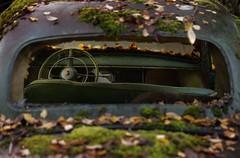 Glücksrad? (mariburg) Tags: rotten marode alt old rostig rustycars canoneos6d canonef100mmf28lmacroisusm