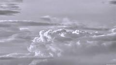 Fly free (Blas Torillo) Tags: cuetzalan puebla méxico mexico nubes clouds ave bird pájaro naturaleza nature animales animals paisaje skyscape blancoynegro byn bn blackandwhite bnw bw cielo sky arte art artsy fineart fineartphoto fineartphotography belleza beauty beautiful fotografíaprofesional professionalphotography fotógrafosmexicanos mexicanphotographers nikon d5200 nikond5200