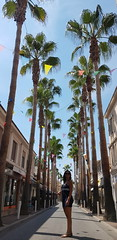20180818_142736 (kriD1973) Tags: europe europa france francia frankreich paca côtedazur costaazzurra frenchriviera juanlespins palms palme palmiers palmen beautiful beauty bella belle bellezza carina charmante charming chica cute donna femme fille frau girl goodlooking gorgeous guapa gutaussehend hübsch jolie lady leute mädchen mignonne mujer people persone personnes ragazza schön schönheit tunesierin tunisian tunisienne tunisina woman