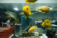 DSC06727 (RAB THANASORN) Tags: streetphotography street streetphotographer streetphoto streetnowhere streetlife fish yellow man indoor bangkok thailand sony rx100 rabthanasorn rab thanasorn