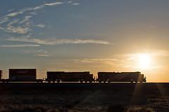 BNSF west at Dennison, AZ 7/6/18 (Ray C. Lewis) Tags: bnsf burlingtonnorthernsantafe az arizona seligmansub route66 skies trains railroads transportation railfan dennison sunrise silhoette