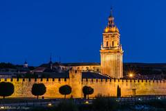 Catedral del Burgo de Osma. (Roberto_48) Tags: ngc catedral burgo osma soria castilla leon