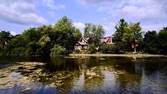 On Golden Pond... (joanneclifford) Tags: rokinon12mm fujifilmxt20 theglebe ottawa brown'sinlet