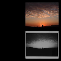 Micro 4/3 and Leica Sofort sunrise (a.pierre4840) Tags: olympus omd em5 mzuiko 25mm f18 leicasofortmonochrom instantfilm phototasticcollage sunrise newforest hampshire england collage fujifilm instant instaxmini monochrome sky skies silhouette clouds