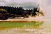 200 Degrees Celsius (annewilson12) Tags: newzealand rotorua geothermal thermalwonderland travel travelphotography nikond5500