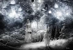 The Way To Wonderland (martie_everaerdt) Tags: rabbit gateway fantasy fantasie