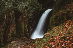 Small waterfall (Rene Wieland) Tags: waterfall longexposure eire irland ireland nature hiking hike expolre leaves bäume trees outdoor