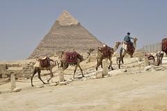 _DSC2133 (BasiaBM) Tags: cairo egypt gizapyramids