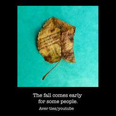 fall - people (AverTiesPhotos) Tags: unusual leaves leaf faces funnyfaces avertiesphotos fineart art famous green sensual photoart artphoto photographer artist artists exotic portraits bestoftheday photooftheday protest motivation trend inspiration pretty mothernature unique picoftheday portrait walk water