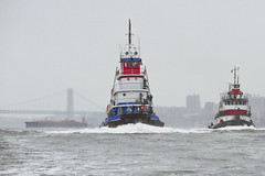 r_180909249_beat0075_a (Mitch Waxman) Tags: 2018greatnorthrivertugboatrace hudsonriver manhattan tugboat workingharborcommittee newyork
