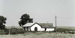 Prowers County, Colorado (unknown quantity) Tags: abandonedhouse brokenroof boardedupwindows horizon pasture faded fence wire utilitypole trees corrugatedroof shadows unpaintedwood weathered