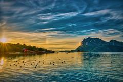 Hilstad utsikt II (johan.bergenstrahle) Tags: 2018 june juni natur norge norway sommar summer