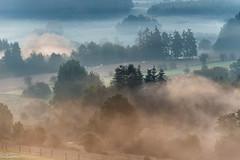 17092018-DSC_0022 (vidjanma) Tags: matin ardenne brume étangs couleurs