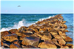 After the Storm (Chris C. Crowley) Tags: afterthestorm ponceinletflorida jetty ocean inlet waves splash atlanticocean water horizon sky rocks boulders pelican bird animal wildlife scenic seascape