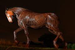 War Memorial Horse (Yorkshire Pics) Tags: warhorse memorial sculpture warmemorial featherstone nightphotography night nightshot nighttime yorkshire 2208 22082018 22ndaugust 22ndaugust2018 horsesculpture warhorsesculpture warhorsememorial