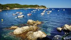 De recreo (candi...) Tags: barcas mar playa cielo agua rocas piedras arboles bosque sonya77 naturaleza nature airelibre personas verano vacaciones descanso