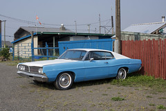 Ford (Curtis Gregory Perry) Tags: 70 mile house british columbia ford ltd 1968 1969 old classic blue car nikon d810 canada canadian