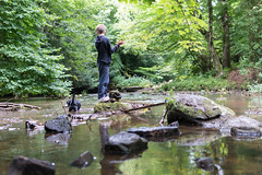 DalkeithCountryPark-18082597 (Lee Live: Photographer (Personal)) Tags: 30mm buildingbridges childrenplaying dc dalheith f14 fortdouglas knights leelive logging northeskriver ourdreamphotography planks playinginastream riverdamming rocks sigma sigma33b965 slides southeskriver water adventurers climbingwalls pirates princesses suspensionbridges treehouses turretedtreehouses wwwourdreamphotographycom