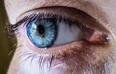 My eye (alisonsage1) Tags: macromondays definingbeauty