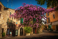 Sirmione (Chrisnaton) Tags: italy sirmione architecture town summer village history charming lombardy purple
