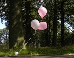 Party nearby (simonpfotos) Tags: balloon flickrfriday hover