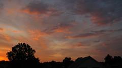 Beautiful sunrise 09/07/2018 Lebedin. Ukraine. (ALEKSANDR RYBAK) Tags: рассвет утро красиво небо облака солнечный свет лучи деревья