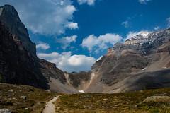 _DSC0463 (marcella.cavelli) Tags: canada britishcolumbia alberta squamish whistler banff jasper clearwater sky falls tree hike hiking trail trip snow lake wood ab bc