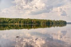 Pyhävesi (pni) Tags: water lake reflection tree woods forest cloud sky view landscape scenery quiet taidekeskus artcentre salmela mäntyharju finland suomi pekkanikrus skrubu pni