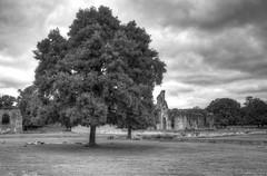 Glastonbury Abbey (Davide Moriondo) Tags: glastonbury abbet england church inghilterra chiesa abbazia rovine parco cielo erba