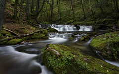 Small Falls (T L Sepkovic) Tags: pawilds waterfalls green softwater canon 5dmkvi breakthroughphotography teamcanon promediagear