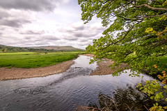 _DSC.0064 - The River Ure at Hawes (SWJuk) Tags: richmondshiredistrict england unitedkingdom swjuk uk gb britain yorkshire yorkshiredales northyorkshire dales wensleydale hawes river riverure water flowing trees overhanging riverbank sky skies clouds landscape waterscape ripples 2018 may2018 spring holidays nikon d7100 nikond7100 tokina1116mm wideangle rawnef lightroomclassiccc fields grass