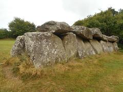 DSCN5674 (norwin_galdiar) Tags: bretagne brittany breizh finistere monts darrée nature landscape paysage