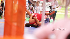 (sevenaale) Tags: sport mat wrestling wrestler india punjabi sevenaale