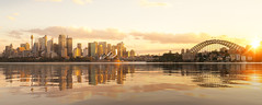 Cityscape of Sysney harbour and bridge (anekphoto) Tags: sydney australia opera house harbour travel harbor city sky skyline new south wales sea water tourism cityscape architecture building landmark bridge sunset business modern holiday downtown tourist famous bay blue view landscape australian urban reflection boat panorama nsw iconic aerial twilight culture morning tower dusk sunrise ferry skyscrapers beautiful evening