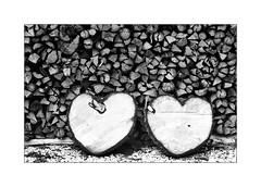 Due cuori e una ... catasta ;/) (schyter) Tags: зенит19 zenit19 kmz lightmeter onboard ferrania p30 135 adox adonal 150 epson v600 sovietcamera sovietlens analogica analogic bw bn bianconero blackwithe argentica film pellicola 35mm slr italy italia homemade development scanned weighing liquids pesaura liquidi helios44m4 foresta legno albero cielo monocromo montagna chalet