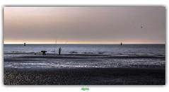 PLAGE DE LA DIGUE DU BREAK à DUNKERQUE (3) (régisa) Tags: dunkerque dunkirk diguedubreak plage beach estran pêcheur fisherman buoy bouée merdunord sea ölafurarnalds