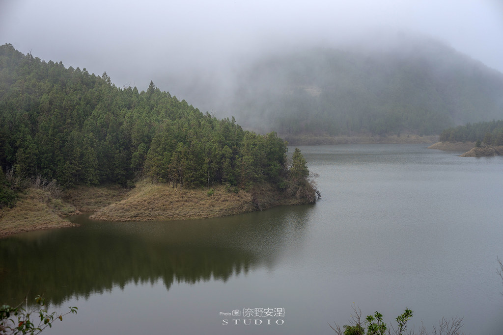 太平山翠峰湖環山步道 |走在泥濘的道路上,只為途中美景 | 宜蘭大同鄉13