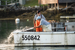 Brothers? (AB 7) Tags: lobster lobstermen maine fishermen newengland boothbayharbor
