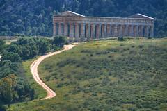 Road to Ruin (hapulcu) Tags: italia italie italien italy mediterranean sicile sicilia sicily sizilien primavera printemps spring segesta ruin ruines ruinas templo temple