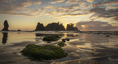 Shi Shi Beach Sunset #1 (Steve Kody) Tags: rocks sand beach surf sunset sun clouds godrays sea ocean waves seastacks tide pools tidepools kelp lowtide makah makahreservation olympicnationalpark nationalpark shishi shyshy camping beachcamping wideangle ultrawide ef1635mm ef1635mmf4l canon 5d steve kody stevekody dramatic pacificnorthwest pnw pacific pacificocean