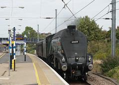 LNER / British Railways A4 Pacific 60009  'Union of South Africa' -  Biggleswade (Neil Pulling) Tags: pacific lner britishrailways a4 60009 unionofsouthafrica biggleswade steamlocomotive train steamengine gresley trains ecml biggleswadestation eastcoastmainline
