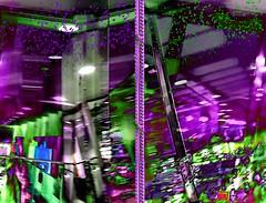 purple reign (CatnessGrace) Tags: panosabotage pano panovision diptych