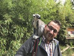 IMG_6809 (gabrielgs) Tags: holiday holiday2018 vakantie2018 camping frankrijk france zoo la fleche lafleche animals dierentuin loire
