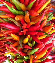 New Mexico chile/chili/peppers. USA. (cbrozek21) Tags: chili chile fruit color newmexico pepper vegetable food
