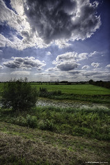 20180902142526 (Henk Lamers) Tags: gelderland neerijnen netherlands