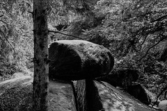 Rocks in Landscape Britanny (jhotopf) Tags: acutol blackwhite monochrome 6x9 zeissikon 120 ilford fp4